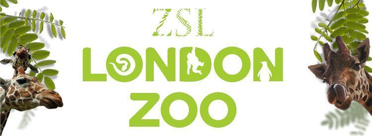 London Zoo Store